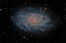 M33 Harry Page image of the week