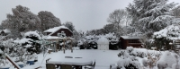 obs_in_snow_nfo