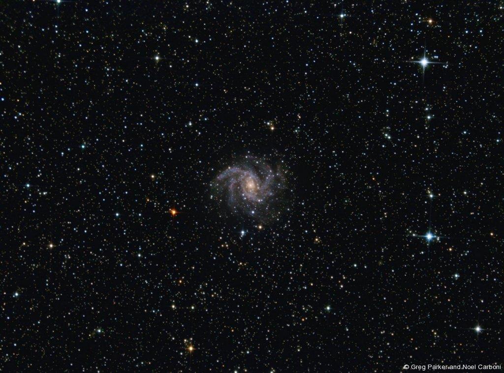 Supernova central - NGC6946