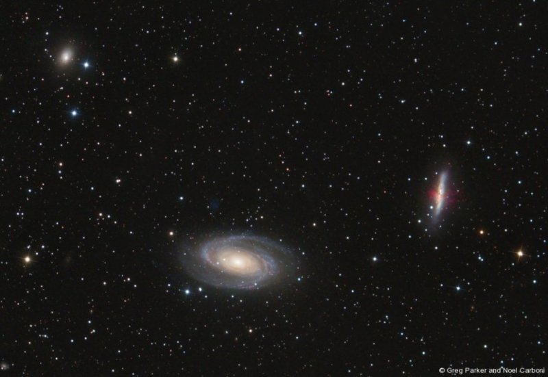 Wide field image of M81/M82 region