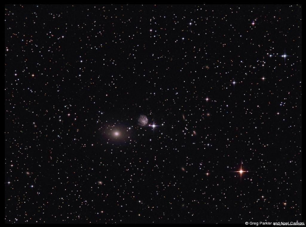 NGC2276 and NGC2300