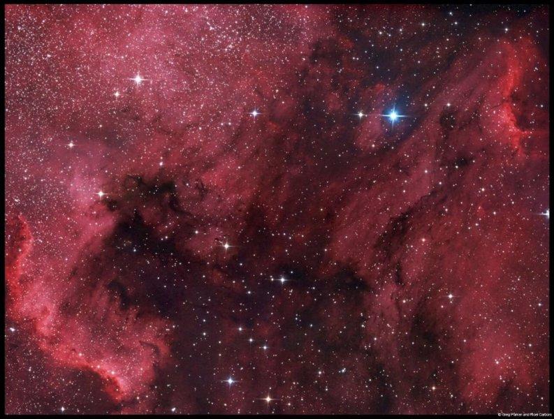 Pelican & N.A. Nebula