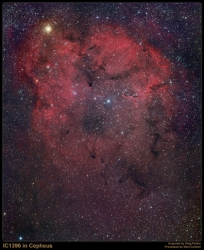 IC1396 emission nebula in Cepheus