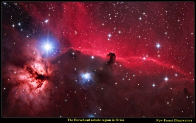 Horsehead screensaver