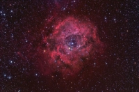 Rosette Nebula wide field