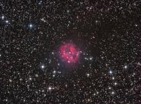 The Cocoon nebula