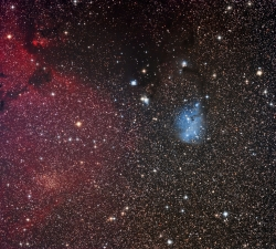 Trumpler 5 and IC2169