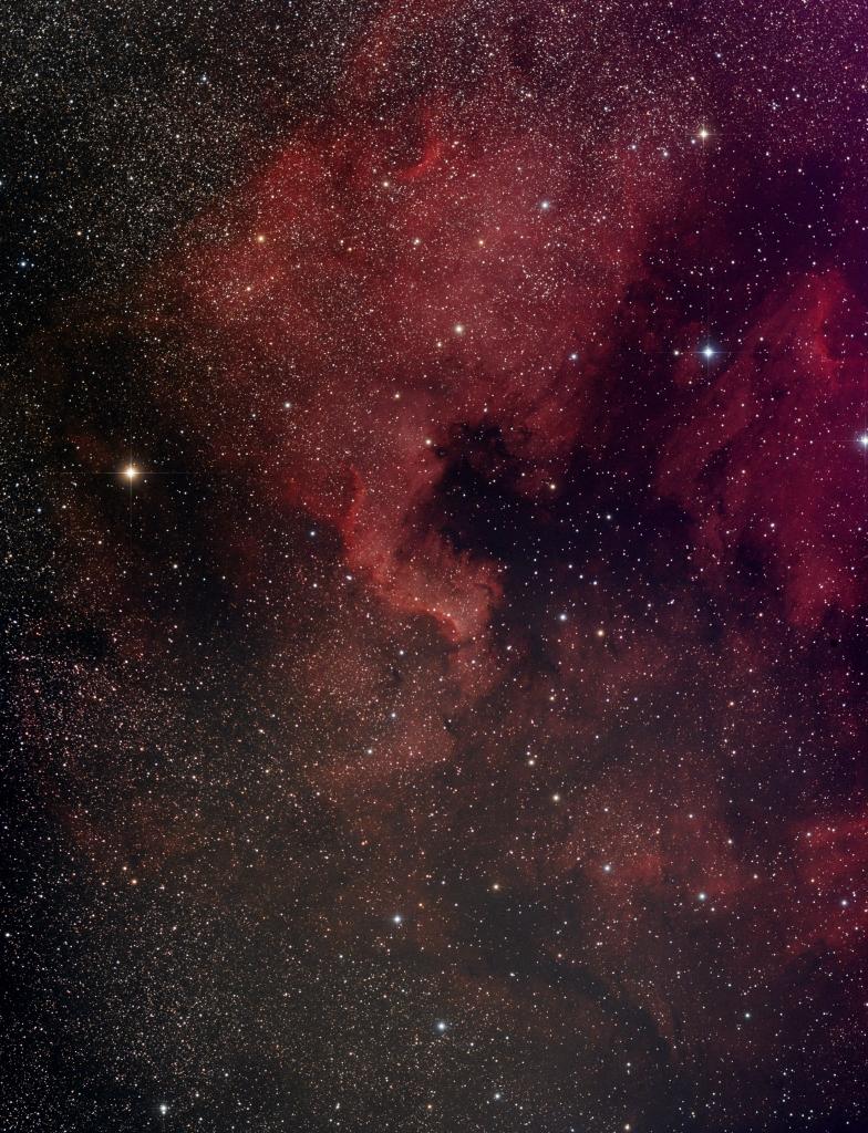 mini-WASP NGC7000