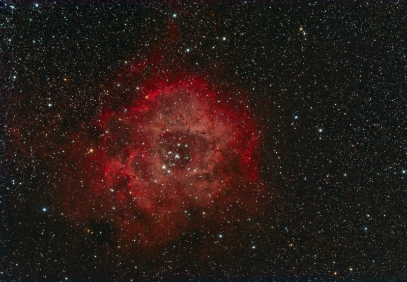 Rosette nebula mini-WASP 29/12/2014