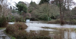 Burley river (road)