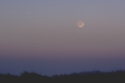 Crescent Moon and Mercury