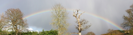 rainbow1_cs3_tiny.jpg