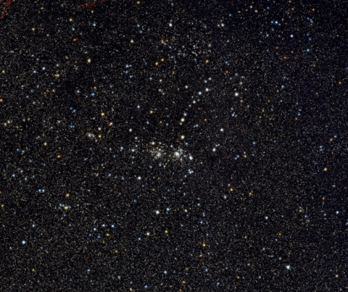 Double_Cluster_the_full_Monty_Forums