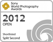 splitsecond_shortlisted