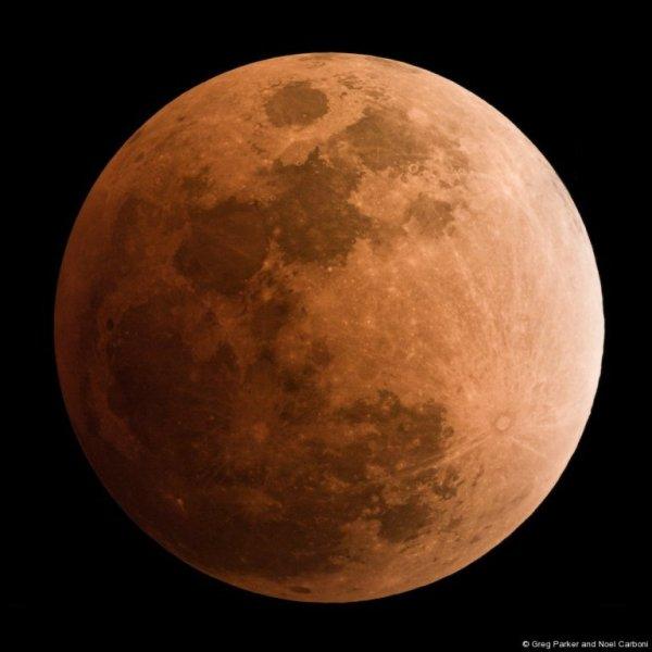 lunar_eclipse_02_20_2008.jpg